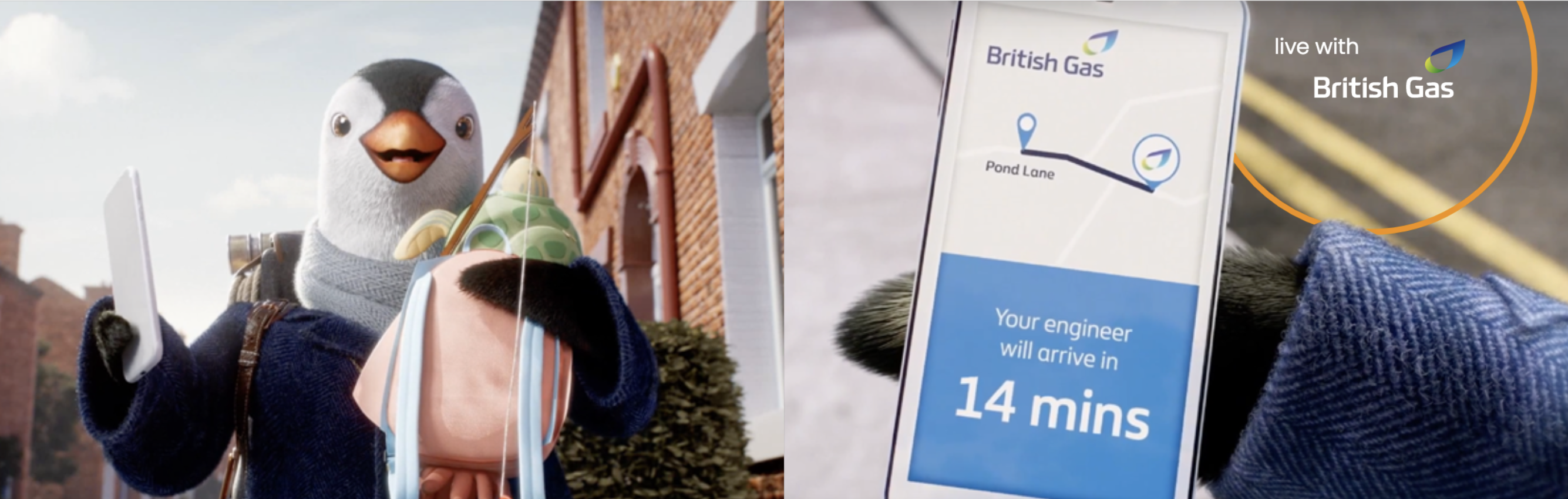 Wilbur - live with British gas